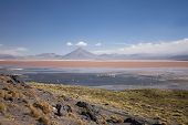 The Red Lagoon (laguna Colorada In Spanish) As Seen From Its Borders.