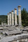 foto of ionic  - Ionic columns of the Temple of Athena Polias in ancient Priene Turkey - JPG