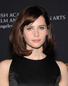 LOS ANGELES - OCT 30:  Felicity Jones arrives to the BAFTA Jaguar Brittannia Awards 2014 on October 30, 2014 in Beverly Hills, CA