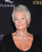 LOS ANGELES - OCT 30:  Dame Judi Dench arrives to the BAFTA Jaguar Brittannia Awards 2014 on October 30, 2014 in Beverly Hills, CA