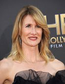 LOS ANGELES - NOV 14:  Laura Dern arrives to the The Hollywood Film Awards 2014 on November 14, 2014 in Hollywood, CA