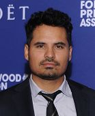LOS ANGELES - AUG 14:  Michael Pena arrives to the HFPA Annual Installation Dinner 2014 on August 14, 2014 in Beverly Hills, CA