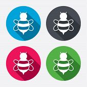 image of flying-insect  - Bee sign icon - JPG