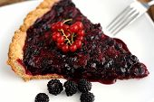 Tart With Black Currant And Blackberry Filling