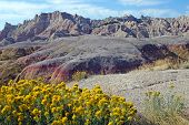 Yellow Mounds Badlands National Park