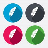 stock photo of light weight  - Feather sign icon - JPG
