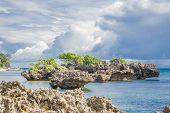 rock island in the tropical sea