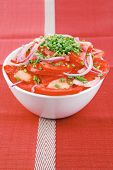 vegetable salad : fresh tomato salad with onion and chives in white bowl over red cloth