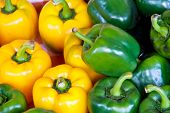 Green And Yellow Bell Pepper Or Sweet Pepper Or Capsicum  Natural Background