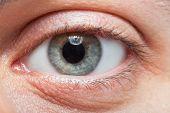 Macro shot of a man's eye
