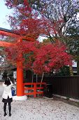 Tourists Visit Shimogamo Shrine Orange Archway In Kyoto