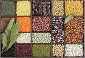 Beans, Peas, Lentils.