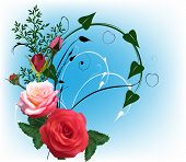 illustration with rose flowers on blue background