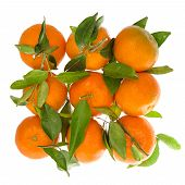 Orange Mandarine With Green Leaves. Top View Of Tangerine