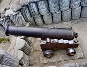 Ship Gun In Coastal Shelter