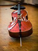 pic of cello  - Cello - JPG