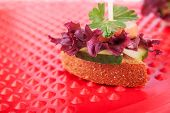 stock photo of picking tray  - One Canape with Bread Sausage Cucumber Salad and Parsley on the Red Background - JPG