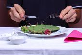 Cactus On A Plate