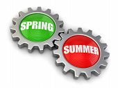 pic of snatch  - Gears with Spring and Summer - JPG