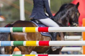 stock photo of horse-riders  - Rider horse gate poles closeup at equestrain show jumping championship  - JPG