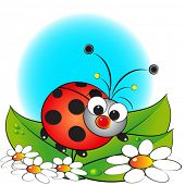 Ladybug and flowers - Card for kids - Scrapbook and labels useful