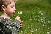 Boy blowing dandelion in summer day on green grass field