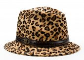 leopard pattern woman's hat