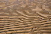 Sand Ripple On The Beach 05