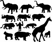 wild and zoo african animals silhouette