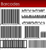 Many Barcode systems in vector art