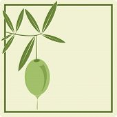 Label for product: Olive Oil