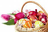 Basket full of Easter eggs and flower tulips