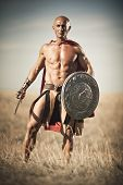 stock photo of bald man  - Gladiator - JPG