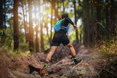 A Man Runner Of Trail . And Athletes Feet Wearing Sports Shoes For Trail Running In The Forest poster