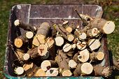 Firewood Preparation. A Pile Of Chopped Wood. Firewood Sawn Stack. poster
