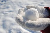snowball_in_the_hands