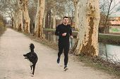 Young Athlete Running Canicross With His Border Collie Dog .young Man Runs With His Dog City Park. H poster