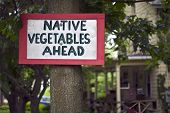 Native Vegetables Sign