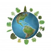 World Forest