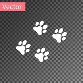White Paw Print Icon Isolated On Transparent Background. Dog Or Cat Paw Print. Animal Track. Vector  poster
