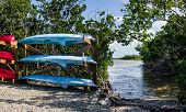 Florida Keys Canoe Launch:  Rental Canoes And Kayaks Wait Beside A Launch Area In Long Key State Par poster