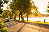 Front View Of Modern Car Driving Or Traveling At Asphalt Road In The Park At Beautiful Sunset, Stree poster