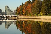Kohle Hafen, Stanley Park, vancouver