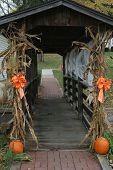 Harvest Time Pedestrian Bridge