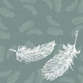 Two Feathers.eps