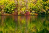 Lake in forest. Crystal clear water, colors of autumn. Plitvice lakes, Croatia