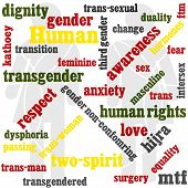 Transgender-Word-Grafik