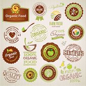 Set of organic food labels and elements
