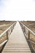 Lonely Wooden Footbridge