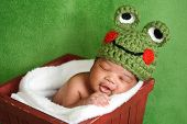 stock photo of cute frog  - Thirteen day old smiling newborn baby boy wearing a green crocheted frog hat - JPG